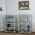 Национальный музей Республики Таджикистан им. К. Бехзода. Музеи Таджикистана